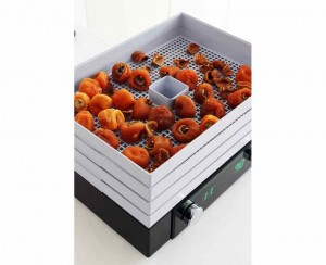Dehydrator Counter Intelligence D-CUBE