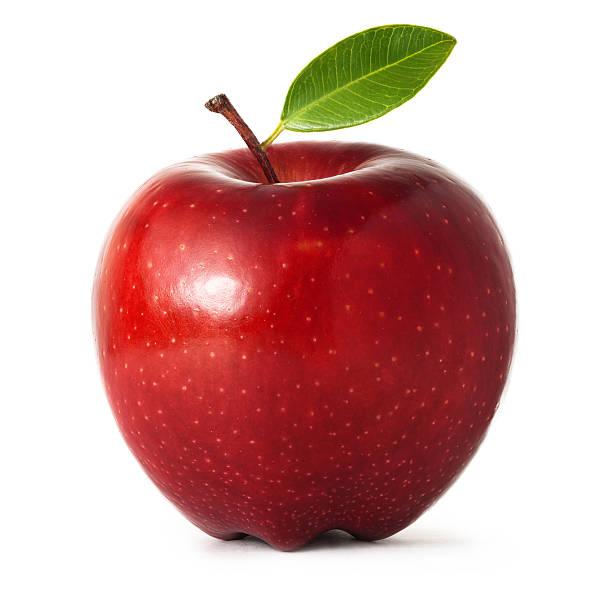 Wyciskarka Oscar Neo XL Wyciska Sok z Owoców
